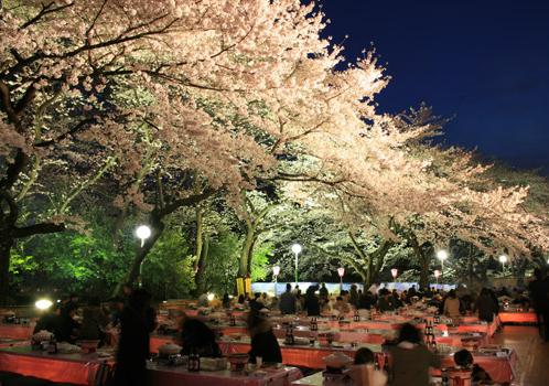 としまえん桜